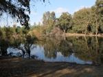 Аталаса парк