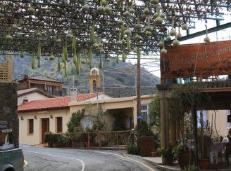 Деревня Гури