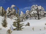 Зимушка-зима.1
