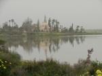 Мечеть Хала СултанТекке