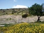 Руины древнего Аматуса