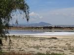 Соленое озеро близПерволья