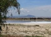Соленое озеро близ Перволья