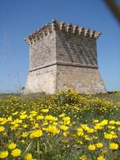 Средневековая смотровая башня